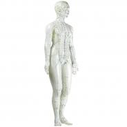 Akupunktuuri nukk (naine)