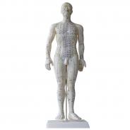 Akupunktuuri nukk (mees)